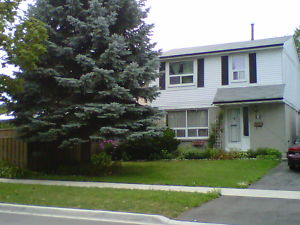Country House For Rent Kitchener Area